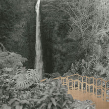 The Real Hike to Akaka Falls