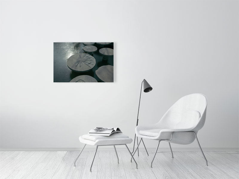 Weight Of Time >> The Weight Of Time Exposed On The Lotus Leaf Of Cement