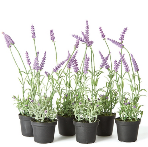 "13"" French Lavender Drop-In"