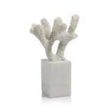Large Coral on Marble Base