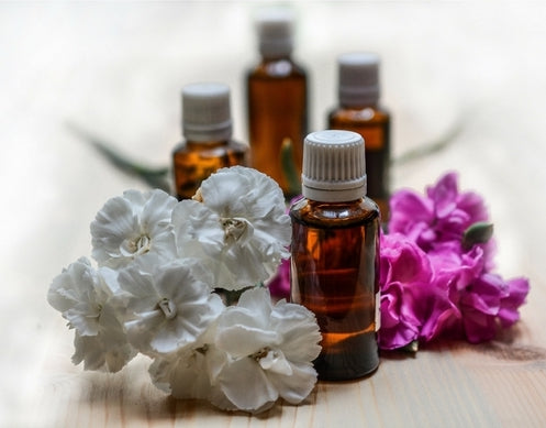 Top 5 Natural Plant Oils for Skincare