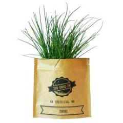 Herb In A Bag - Chives - Wholesome Habitat