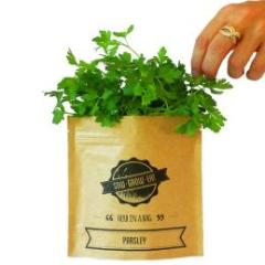 Herb In A Bag - Parsley - Wholesome Habitat