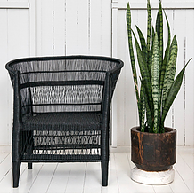 Malawi Cane Chair - 1 Seater in Black - Wholesome Habitat