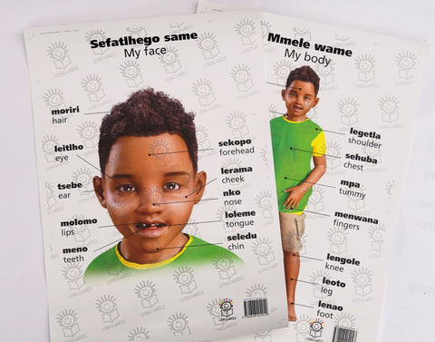 English and setswana dual language posters of little boy- parts of the body/face