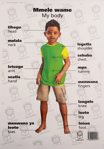 English and setswana dual language poster of little boy- parts of the body