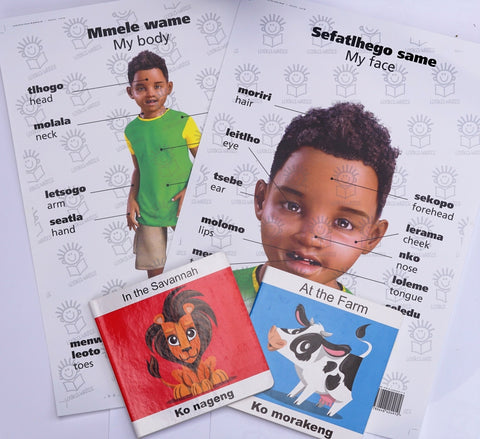 English/tswana boardbooks and my body/face boy posters hamper