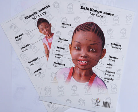 English and setswana dual language poster set of little girl- parts of the body/face