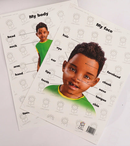 English my body and my face poster set of little boy