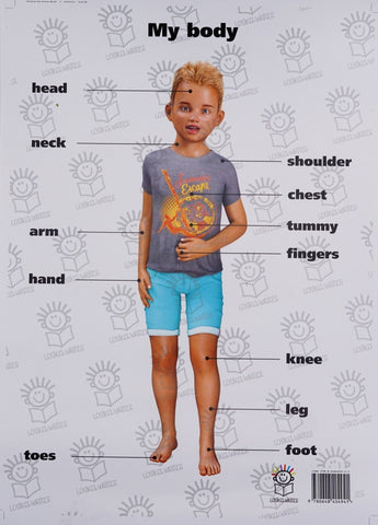 English poster of little boy- parts of the body