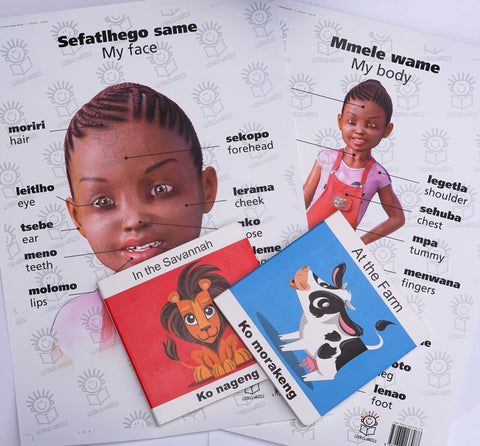 English/tswana boardbooks and my body/face girl posters hamper