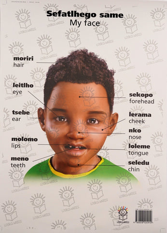 English and setswana dual language poster of little boy- parts of the face
