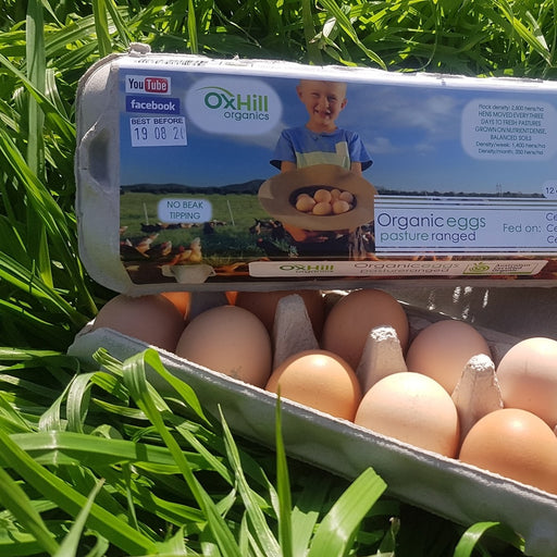 Oxhill Organic Eggs One Dozen