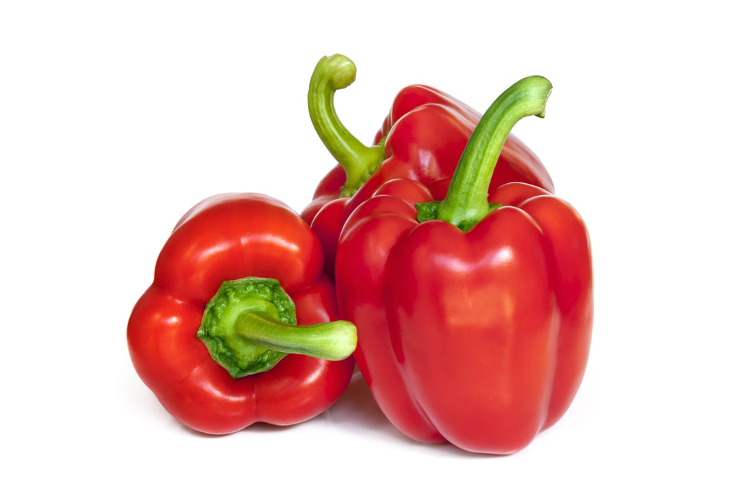 Certified Organic Red Capsicum each