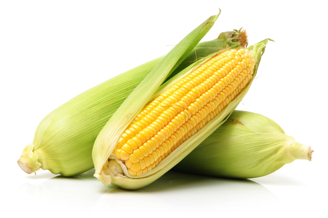 Certified Organic Sweet Corn each