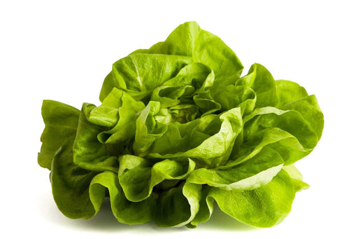 Certified Organic Butter Lettuce Each