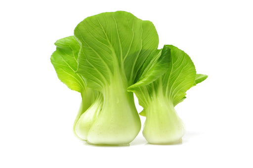 Certified Organic Bok Choy bunch