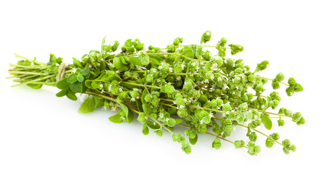 Certified Organic Oregano Bunch