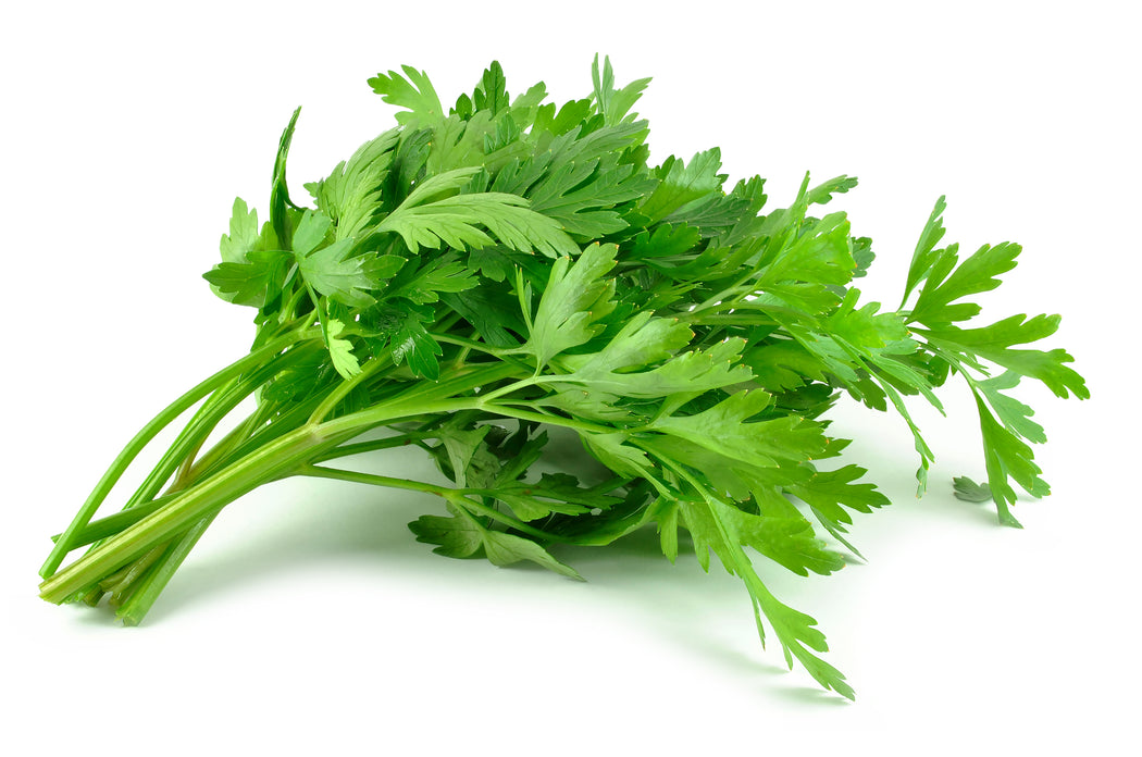 Certified Organic Flat Parsley Bunch