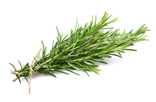 Certified Organic Rosemary Bunch