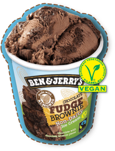 Ben & Jerry's Non-Dairy Ice Cream Chocolate Fudge Brownie 500ml