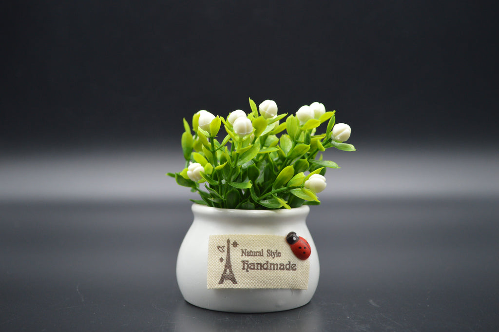 Mini Flower Pots - Pair