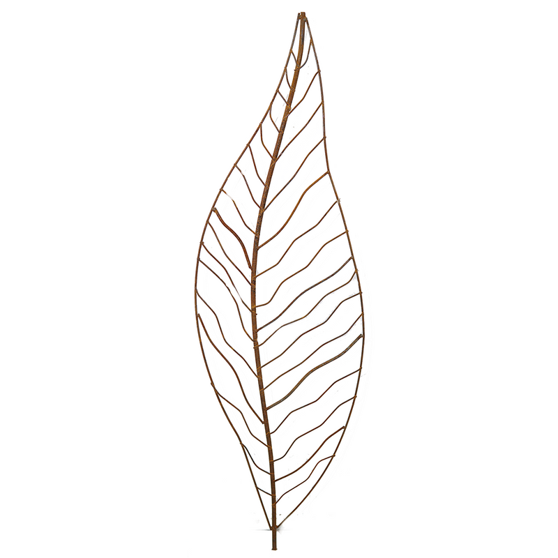 W4084  Narrow Leaf