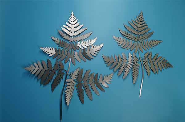 W4440 Lady Fern -  Rust & Raw Steel
