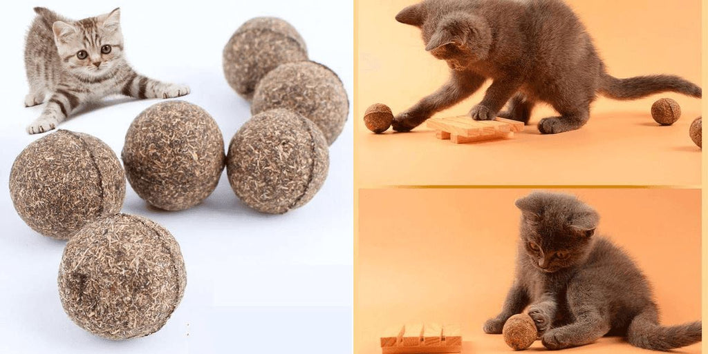 Natural Catnip Ball Healthier Lifestyle 4 All
