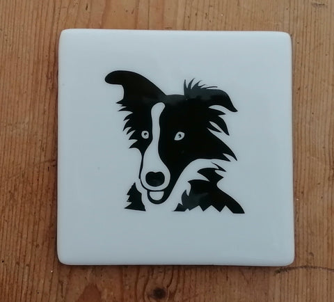 Fused Glass Collie Coaster in Black and White. Can personalise.