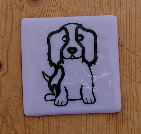 Fused Glass Coaster with Spaniel Outline. Can Personalise.