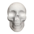 Skulls Bath Bomb | Limited Edition Bath Bombs | Scentiments | Scentiments