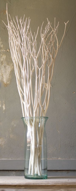 Set of Three (3) Bleached Willow Branches