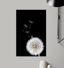 Load image into Gallery viewer, Dandelion - Poster Art
