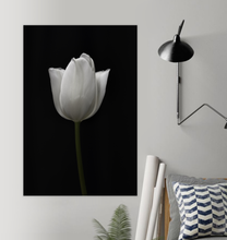 Load image into Gallery viewer, Tulip - Poster Art