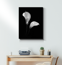 Load image into Gallery viewer, Calla Lily - Wrapped Canvas Art
