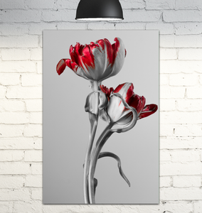 Red And Grey Tulips - Wrapped Canvas Art