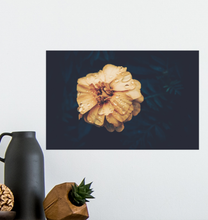 Load image into Gallery viewer, Vintage Hibiscus Flower - Poster Art