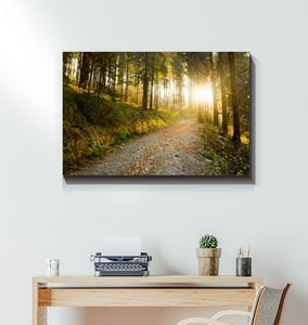 Morning Hike - Wrapped Canvas Art