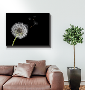 Dandelion - Wrapped Canvas Art
