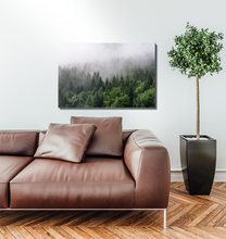 Load image into Gallery viewer, Forest Mountain Fog - Premium Acrylic Print