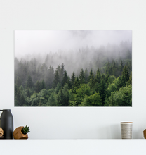 Load image into Gallery viewer, Forest Mountain Fog - Poster Art