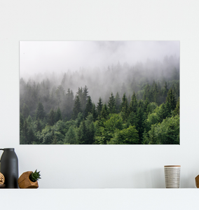 Forest Mountain Fog - Poster Art