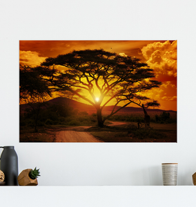 African Sunset - Poster Art