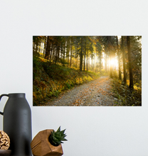 Load image into Gallery viewer, Morning Hike - Poster Art