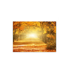 Autumn Road - Wrapped Canvas Art
