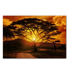 African Sunset - Wrapped Canvas Art