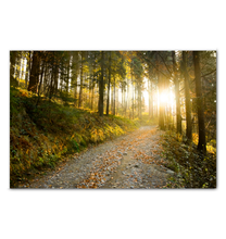 Load image into Gallery viewer, Morning Hike - Wrapped Canvas Art