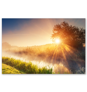 Morning Mist - Poster Art