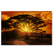 Load image into Gallery viewer, African Sunset - Poster Art